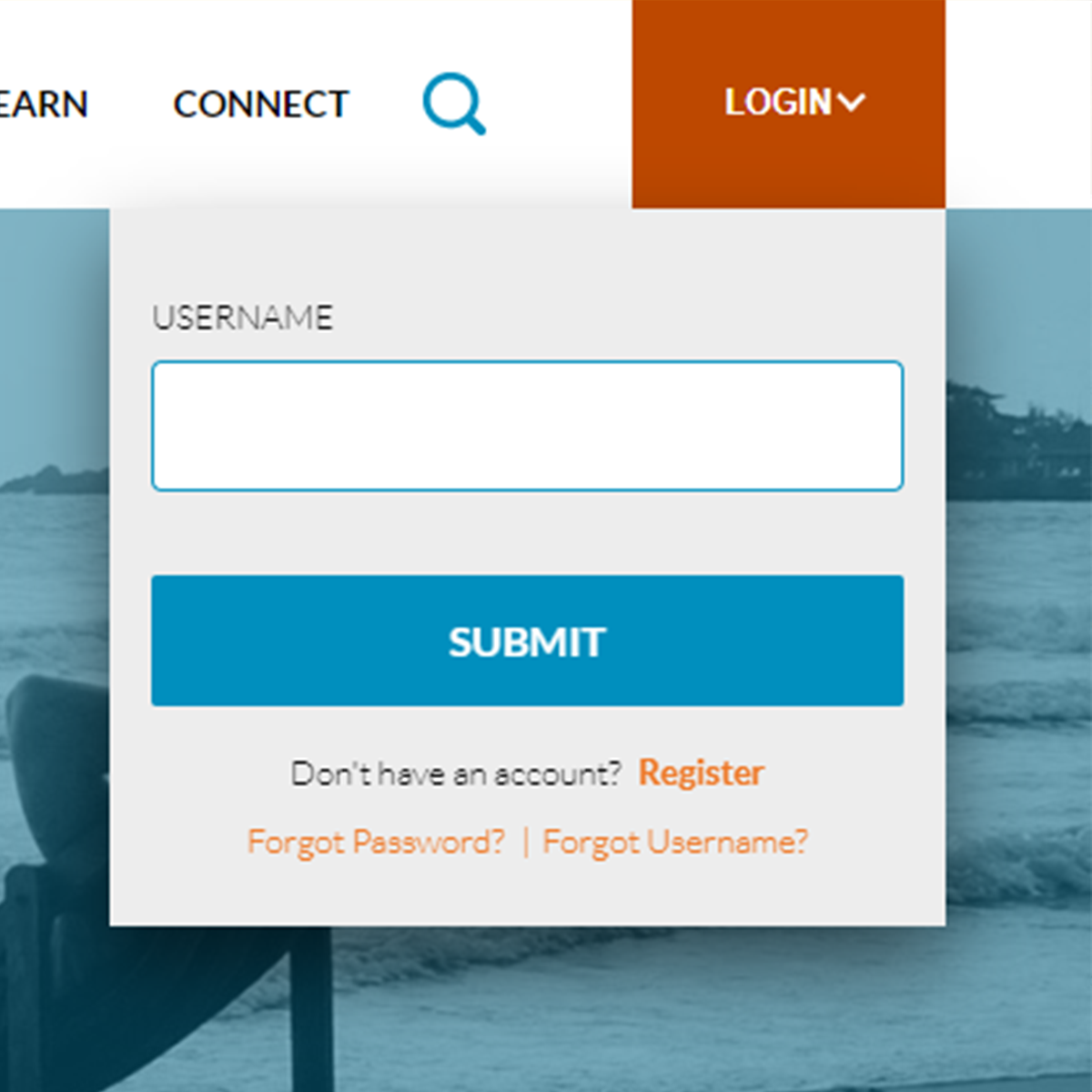 screenshot of login